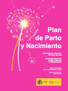 Plan de parpto y nacimiento - Guías y documentos CIFIP Suelo Pélvico Alicante